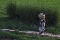India_01 by Arquimides Espiritu