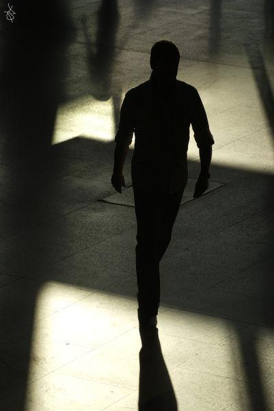 Shadows-3-f