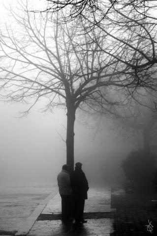 Fog-f
