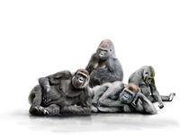 Affenbande von Werner Dreblow