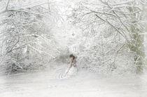 A-winters-soul
