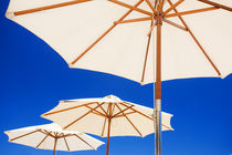Summer Parasols by Alex Bramwell