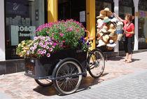 Flower bike by Jose Corraliza