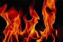 Fireflames-0098