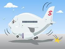 Bouncing airplane von William Rossin