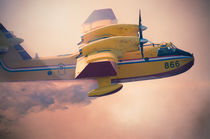 Canadair on Fire by Leonardo Filippi