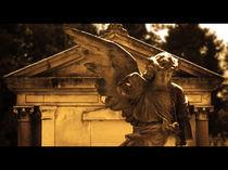 Angel by Miroslav Lucan