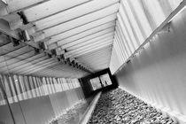 MON's Corridor by Luis Carlos