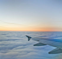 Come Fly With Me by cjwesselsphotography