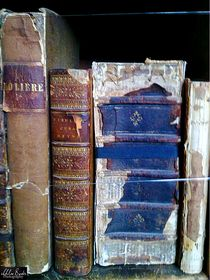 Delicate books von Chloe Birds