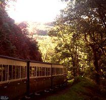 Steam Train by Chloe Birds