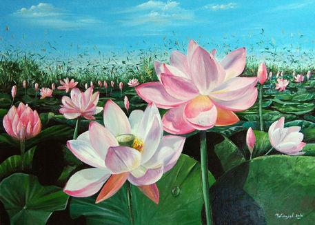 Lotus-field