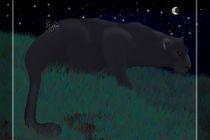 Black Panther by Alpin Jongari