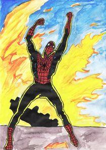 The Spiderman's Rage von Andre Bacchi