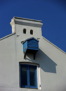 Blue Bird House von Miroslav Lucan