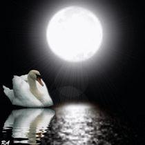 Einsame-nacht-1