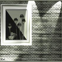 Gallerie-1
