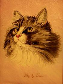 The Cat / Katze by Apostolescu  Sorin