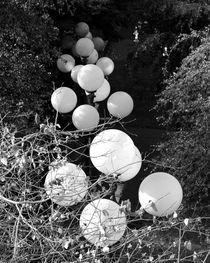 lumières blanches von alyssa-kai-designs