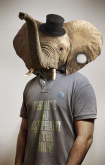 Elephant Quico Sentence by Henrique Garcia