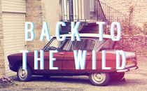 Back-to-the-wild
