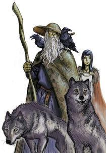 Odin by christian-hoejgaard
