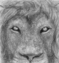 The Lion by Kody Goodmakers