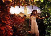 The Masters Vineyard by Stuart Manuel