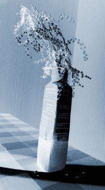 Black&white Mimosa von Lina Shidlovskaya