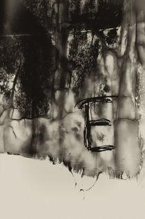organic matter by George Schein Zautashvili