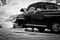 Havana 200904071266 von Alessandro Guzzeloni