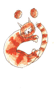 Alphabet Cat von Yusuf Tansu  Ozel