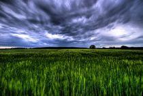 Deutschland / Germany 06 - Nahendes Gewitter HDR / Incoming storm HDR von Johannes Ehrhardt