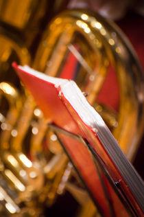 orchestra (1) von Michal Ptaszynski