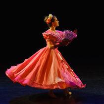 Ballet dancer by ilja van de pavert