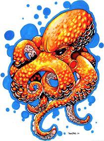 Orange Octopus von Danny Silva