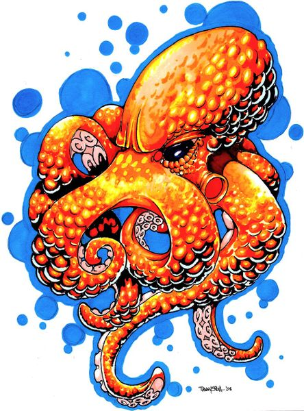 quotorange octopusquot drawing art prints and posters by danny