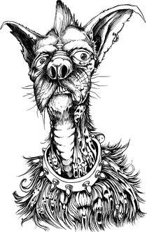 Rude Dog von Danny Silva