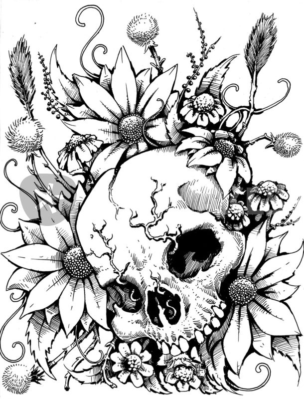 """""""Wild Flowers"""" Drawing art prints and posters by Danny ..."""