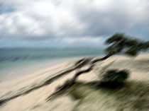 Sturm auf Mauritius - Insel - Sandstrand by Jens Berger
