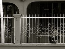 Behind Bars by Alec McHugh