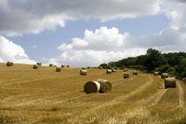 Hay bales by George Kay