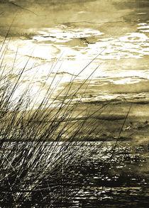 Ostseestrand von Matthias Rehme