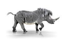 Zebra-Horn  von Werner Dreblow