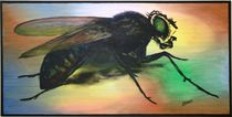 """""""the fly"""" 100 x 50 cm 2011  by Harry Stabno"""