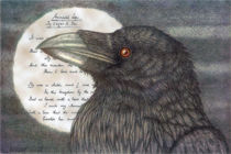The Raven by Herbert Kuipers