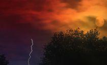 Wolfsmond von Cloude Vigal << Grafiknaturearts