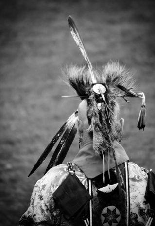 Feathers3-lo-fi