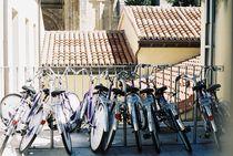 bikes by Maria Inês Pires