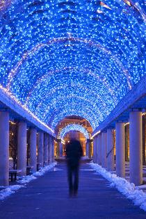 Winter Man von Amy Garwood